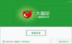 大番茄一键重装系统下载 大番茄一键重装系统V2.0.1.0526贡献版