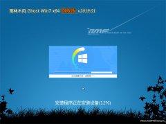 雨木风林GHOST WIN7 64位 超纯旗舰版 v2019年01月(自动激活)